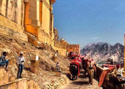 jaipur-foto1