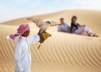Falcon Couple_Landscape