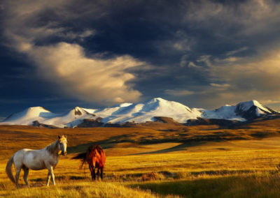 Mongolian-lansdcape