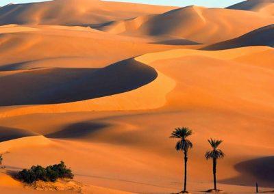 dubai-desert