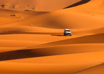 safari-por-el-desierto