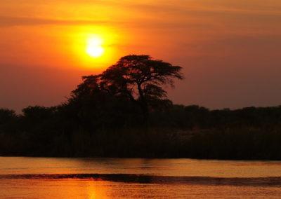 africa-290434_1920pixa-free