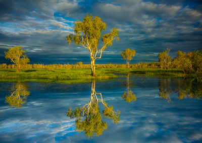 glenn-guy-reflection-kakadu