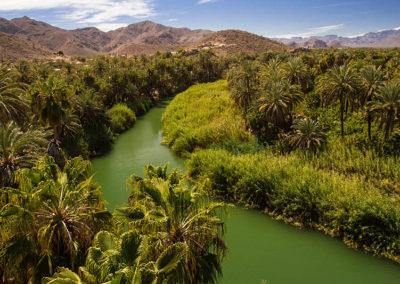 mulege-g01-p02-oasis