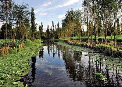 xochimilco-canales-ene11